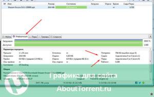 Сиды и пиры в программе BitTorrent
